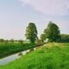 Letní krajina s potokem